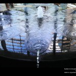 NuSkin Innovation Center, water feature designed by CMS Collaborative