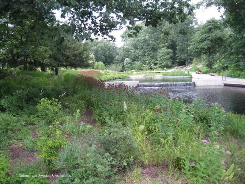 New York Botanical Garden Native Plant Garden